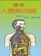 標準人體解剖圖