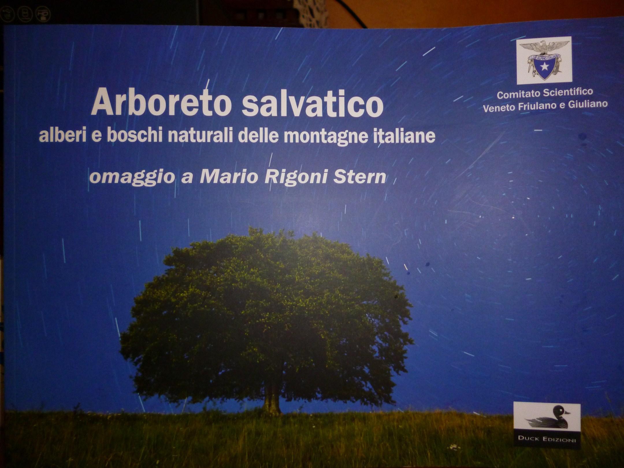 Alberi, boschi naturali delle montagne italiane