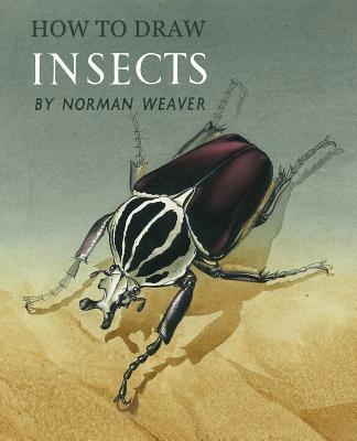 How to Draw Insects (Facsimile Reprint)