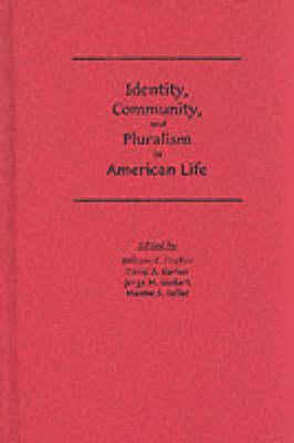 Identity, Community, and Pluralism in American Life