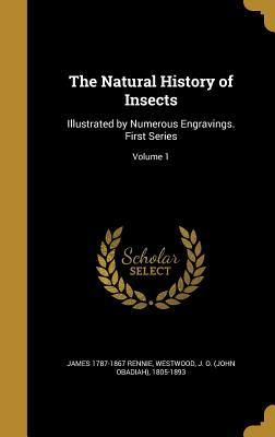NATURAL HIST OF INSECTS