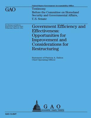 Government Efficiency and Effectiveness