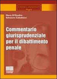 Commentario giurisprudenziale per il dibattimento penale