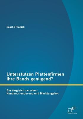 Unterstützen Plattenfirmen ihre Bands genügend? Ein Vergleich zwischen Kundenorientierung und Marktangebot