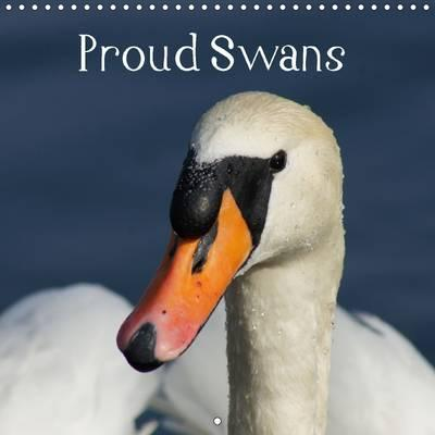 Proud Swans 2016