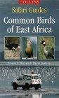 Common Birds of East Africa