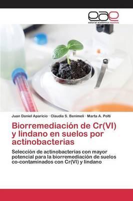 Biorremediación de Cr(VI) y lindano en suelos por actinobacterias