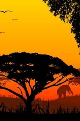 Africa Sundown Lands...