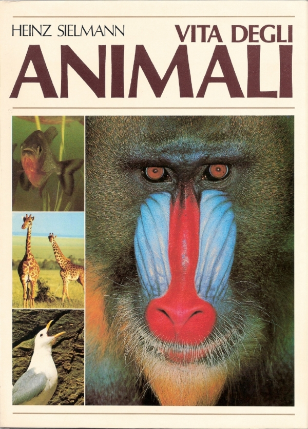 Vita degli animali, ...