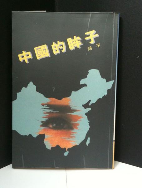中國的眸子