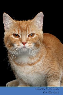 Munchkin Cat Present...