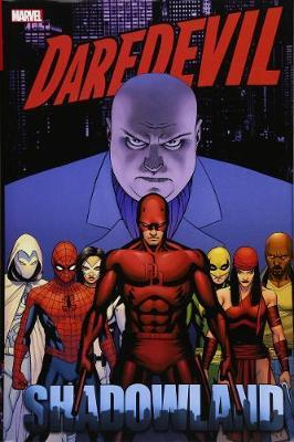 Daredevil Shadowland Omnibus