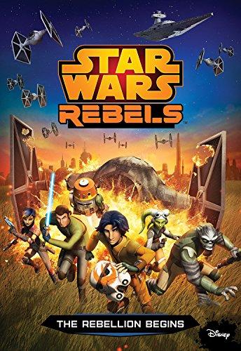 The Rebellion Begins