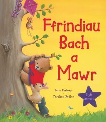 Ffrindiau Bach a Mawr