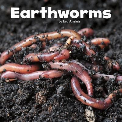 Earthworms (Little Pebble