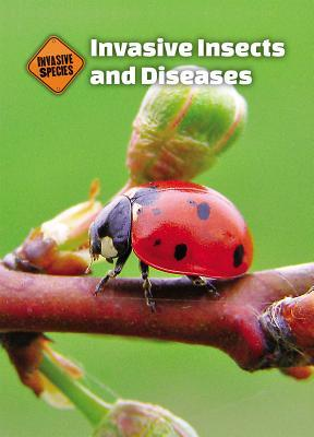 Invasive Insects and Diseases