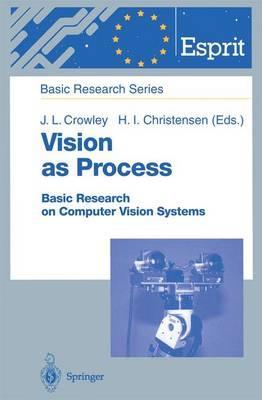 Vision As Process