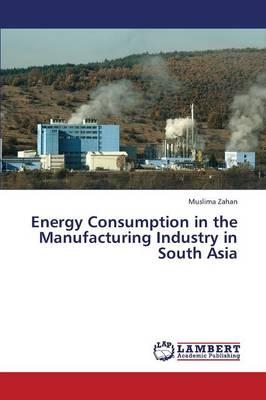 Energy Consumption in the Manufacturing Industry in South Asia
