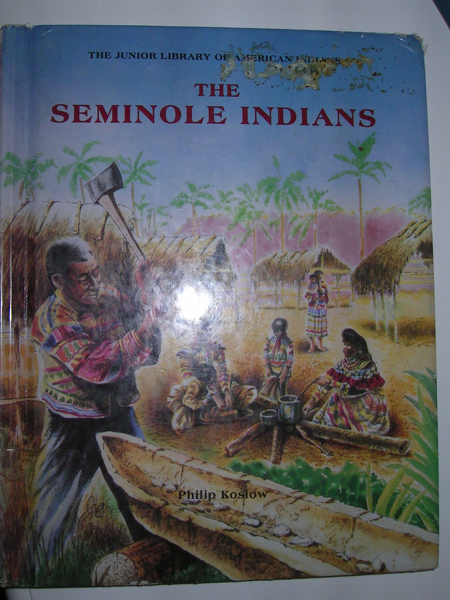 The Seminole Indians