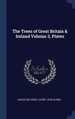 The Trees of Great Britain & Ireland Volume 3, Plates