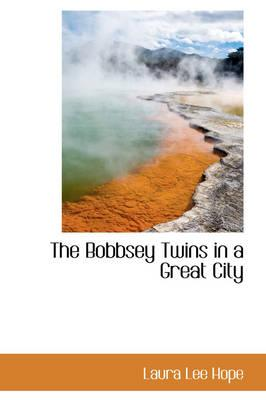 The Bobbsey Twins in a Great City