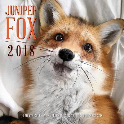 Juniper Fox 2018 Calendar