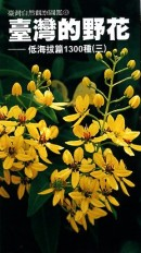 臺灣的野花