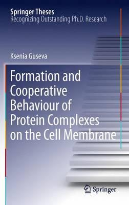 Formation and Cooperative Behaviour of Protein Complexes on the Cell Membrane