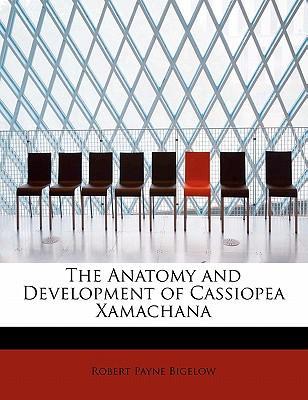 The Anatomy and Development of Cassiopea Xamachana