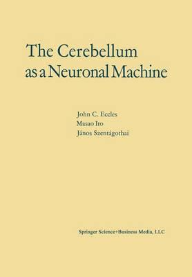 The Cerebellum As a Neuronal Machine