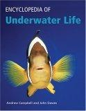 Encyclopedia of Underwater Life