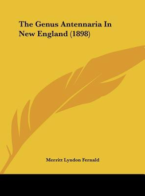 The Genus Antennaria in New England (1898)