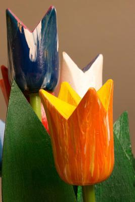 Wooden Tulips Lined ...
