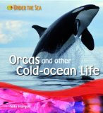 Orcas and Other Cold Ocean Life