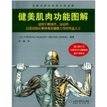 健美肌肉功能圖解