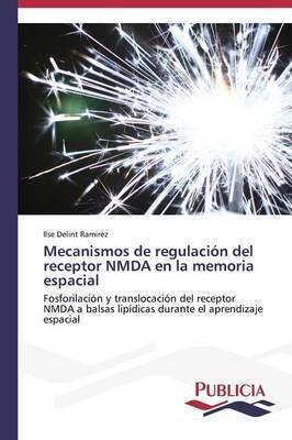 Mecanismos de regulación del receptor NMDA en la memoria espacial