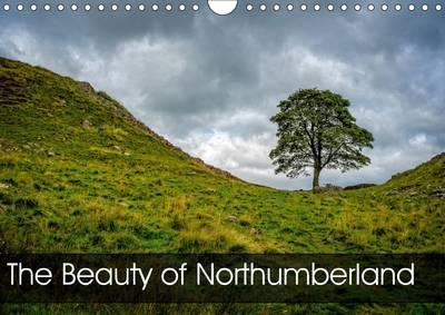 The Beauty of Northumberland 2017