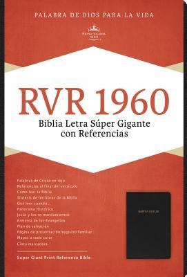 Santa Biblia/ Holy Bible