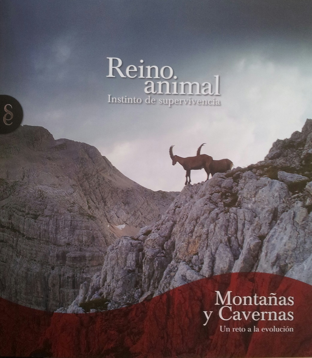 Reino animal: Instinto de supervivencia, 8