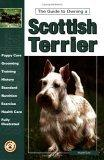 The Guide to Owning a Scottish Terrier