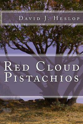 Red Cloud Pistachios