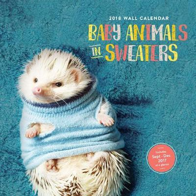 Baby Animals in Sweaters 2018 Calendar