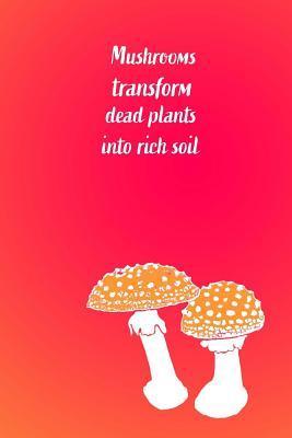 Mushrooms Transform Dead Plants into Rich Soil