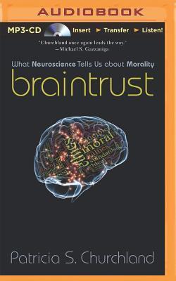 Braintrust