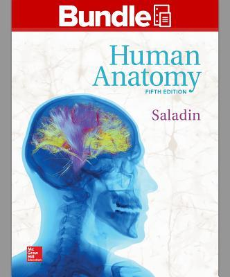 Human Anatomy + Connect