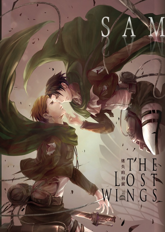 The Lost Wings 迷失的羽翼