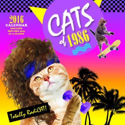 Cats of 1986 2016 Calendar