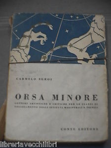 Orsa Minore