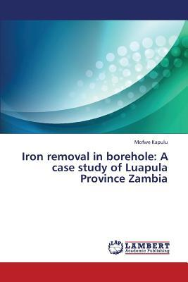 Iron removal in borehole