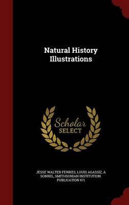 Natural History Illu...